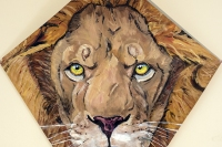 Aslan Kite Raffle Supports Youth Scholarships  - update!