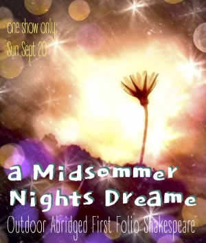 Midsommer Nights Dreame